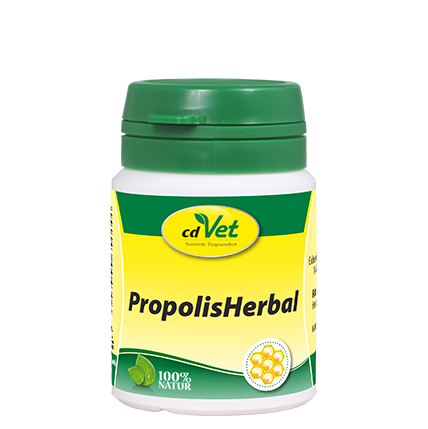 Cd Vet Propolis Herbal